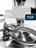 Derecho Procesal Penal I Módulo IV