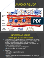 Inflamação Aguda