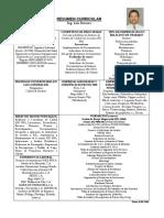 Resumen Sintetizado de Curriculum Lr
