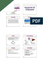 11 - Homeostasis energetica (1).pdf