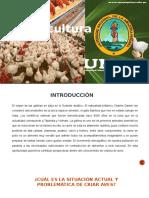 avicultura.pptx