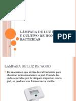 Lámpara de Luz de Wood y Cultivo de Hongos y Bacterias