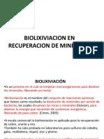 20. BIOLIXIVIACION