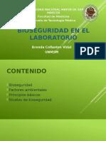 1°PRACTICA-bioseguridad