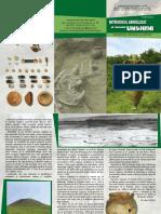 Patrimoniul arheologic al raionului Ungheni. Documentare, cercetare, valorificare