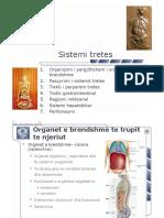 Sistemi Digjestiv 24-36 RS