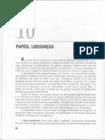 A09 - Zimerman - Cap 10 - Fundamentos Básicos Das Grupoterapia