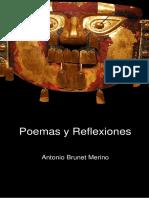 Book POEMAS Y REFLEXIONES