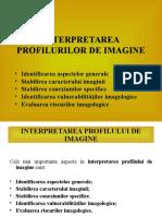 Prelegerea 4. Interpretarea Profilurilor de Imagine (1)