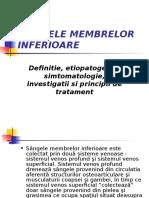 VARICELE MEMBRELOR INFERIOARE