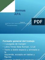 NORMAS_APA04