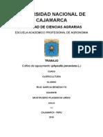 AGUAYAMANTAO.docx