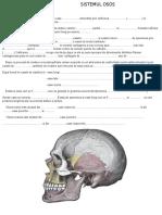 TEST DE MEMORIE sistemul osos.docx