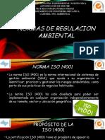 Normas de Regulacion Ambiental