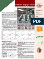 Eficiencia de transpiración en papa nativa usando la técnica de la sequía regulada en la comunidad de Palccoyo, Cusco