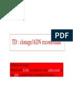 DT-TD_clonage.pdf