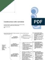 Consideraciones sobre el Curriculum