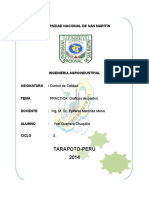 PRACTICA GRÁFICAS DE CONTROL QUEQUE.docx