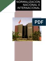 NORMALIZACION NACIONAL E INTERNACIONAL.docx