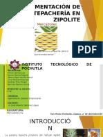 Implementación de Una Tepachería en Zipolite