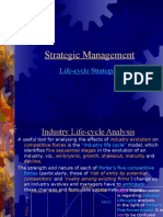 Industry Life Cycle Stages