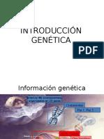 01. Genética