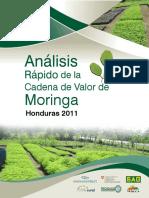Analisis Cadena de Valor Moringa. - Honduras