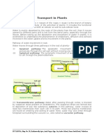 Transport in Plants Notes