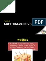 Module VI - Soft Tissue Injuries