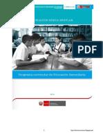 Programa Curricular de Comunicación-2017