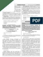 Delegan en el Gerente Central de Administración durante el año fiscal 2017 la facultad de aprobar la formalización de las modificaciones presupuestarias efectuadas en el Nivel Funcional Programático a que se refiere el TUO de la Ley General del Sistema Nacional de Presupuesto
