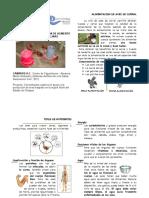 10.5Manual_ProyectoProductivo Elaboracion AlimentoAves
