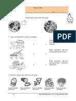 Estudo do Meio_alimentação_1