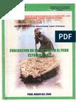 Evaluacion de La Totora en El Perú