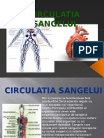Circulatia Sangelui.pptx