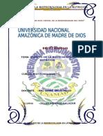EL IMPACTO DE LA BIOTECNOLOGÍA EN LA NUTRICIÓN.docx