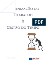 119563557_manual_organizado_tempo.pdf