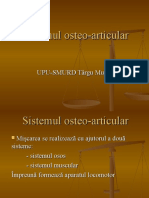 7 - Sistemul Osteo-Articular