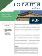 Panorama+company+insolvencies+-+spring+2013.pdf