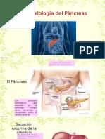 Fisiopatologia Del Pancreas