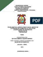 TESIS ALIMENTOS FINAL COMPLETO.doc