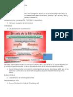 Hiperbilirrubinemia en Pediatría