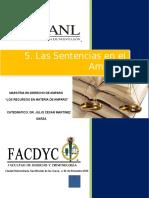 Tema 5. Las Sentencias en El Amparo