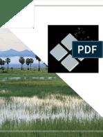 La Economía de Los Ecosistemas y La Bd de Humedales