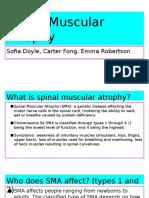spinal muscular atrophy-2