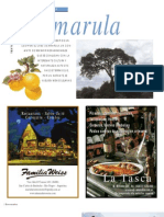 Amarula - María Virginia Gallo