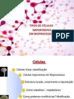 Aula Celulas1