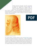 FdgConsiderado El Paradigma Del