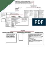 Fisiopatologia Pie Diabetico