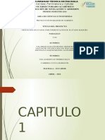 Diapositiva Pis b